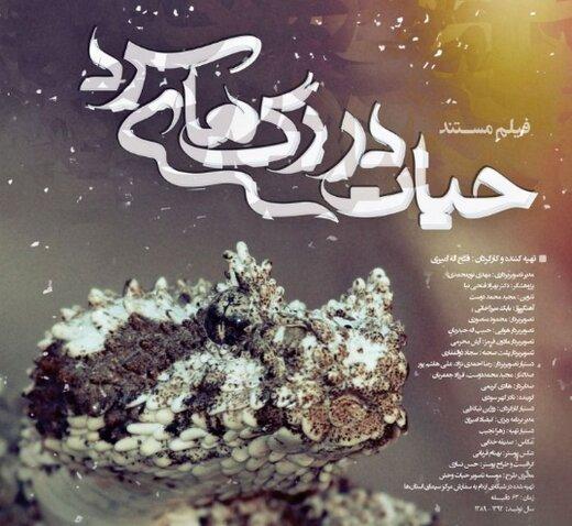 «حیات در رگهای سرد»، روایت زندگی اسرارآمیز خزندگان غرب ایران