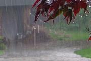 بارش شدید باران در نیمه شمالی کشور