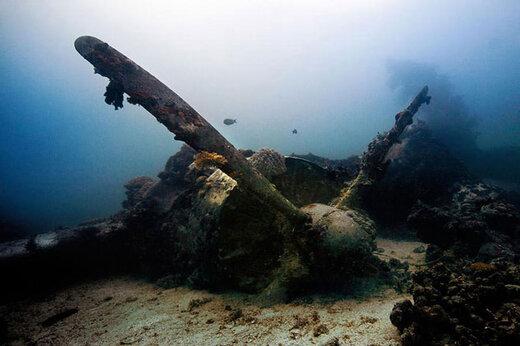 ببینید | تصاویری جالب از یادگاریهای ماندگار در دل آبهای شفاف مالدیو