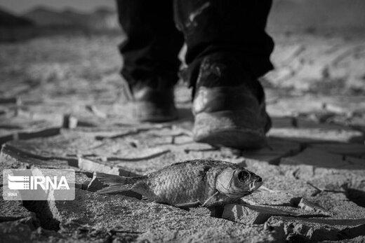 خشکسالی در استان سیستان و بلوچستان