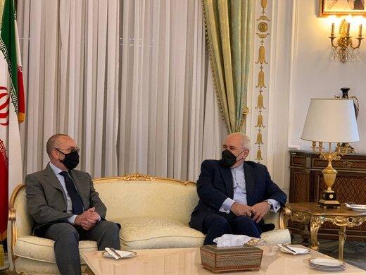 دیدار ظریف با رئیس کمیسیون سیاست خارجی مجلس سنای ایتالیا/عکس
