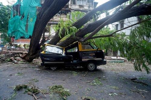 خسارت های توفان در شهر بمبئی و ایالت گجرات هند