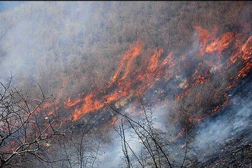 آخرین وضعیت آتشسوزی جنگلهای گچساران