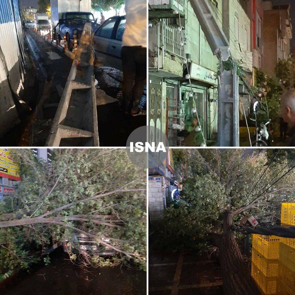 عکس   شکسته شدن تیر چراغ برق و درختان در خیابان فلاح تهران پس از تندباد