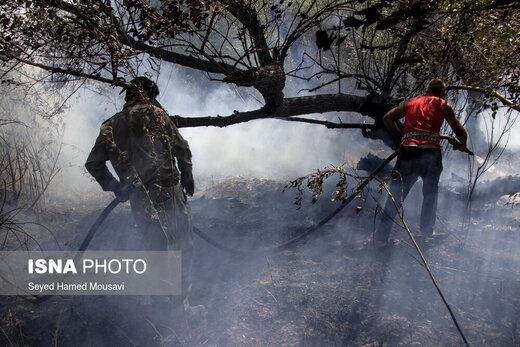 آتش سوزی مجدد در جنگلهای کرخه شوش