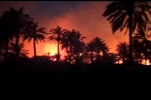ببینید | آتشسوزی در نخلستانهای ۳ روستای آبادان