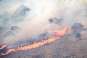 ببینید | مهار آتش در کوه «حاتم»؛ ردپای قاچاقچیان ذغال در آتشسوزیهای زاگرس