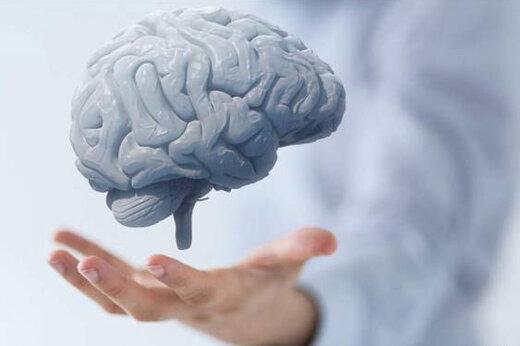 ببینید | ۷ نکته برای حفاظت از مغز و عملکرد آن