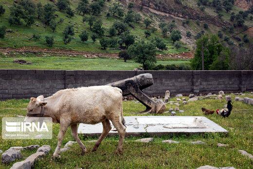 بَردِ شیر (شیر سنگی) نماد باشکوه ایل بختیاری
