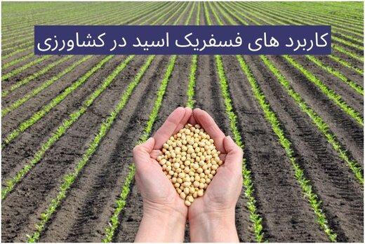 اسید فسفریک در کشاورزی چه کاربردی دارد + خطرات اسید فسفریک