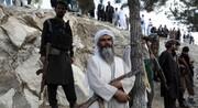 طالبان: ۸۰درصد از خاک افغانستان را تحت کنترل داریم