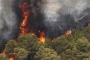 ببینید | تصاویری از آتشسوزی گسترده در جنگلهای کوه نارک گچساران