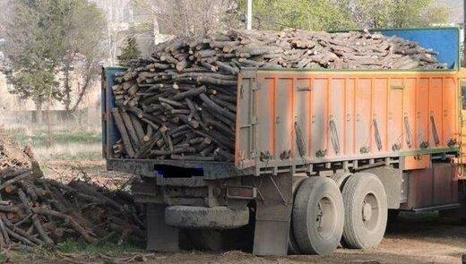 قاچاقچیان چوب در دام پلیس یزد