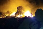 ببینید | جنگلهای زاگرس شعلهور شدند