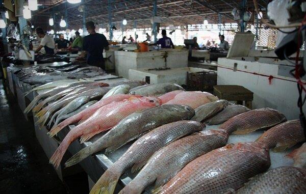 قیمتهای نجومی ماهی در بازار/ جدول