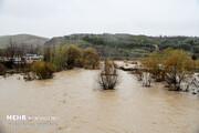 سیلاب دریاچه بختگان نیریز را باتلاقی کرد