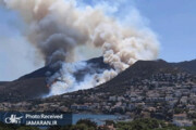 تصاویر | حواسپرتی یک راننده و فاجعه آتشسوزی در هزاران هکتار جنگل!