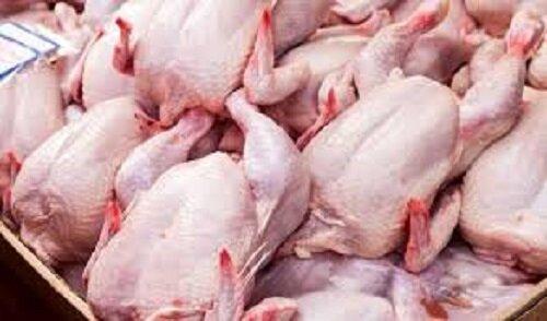 حذف مالیات ۱۲۰ هزار تن مرغ منجمد وارداتی