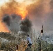 آتشسوزی در پارک ملی دریاچه ارومیه / محیطزیست: مهار شد