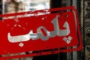 ۱۱ واحد صنفی متخلف در مازندران پلمب شد