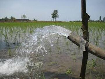 مصرف آب بخش کشاورزی باید مدیریت شود/ مهمترین اولویت آبی دولت سیزدهم چیست؟