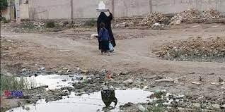 کشت برنج در خوزستان درگیر بحران آب/مهمترین اولویت دولت سیزدهم چیست؟