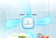 آشنایی با تکنولوژیهای برتر بهداشت داخل یخچال الجی