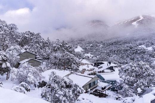 ببینید | برف و یخبندان بیسابقه در ملبورن استرالیا!