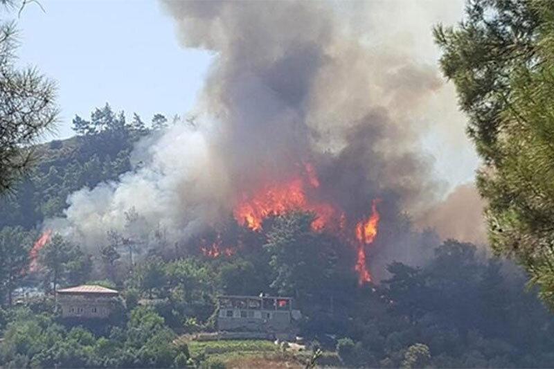 ببینید | فاجعه در ترکیه؛ سردرگمی آتشنشانها و مسئولین از وسعت حریق