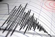 فرماندار گناوه: زلزله امروز خسارتی نداشت