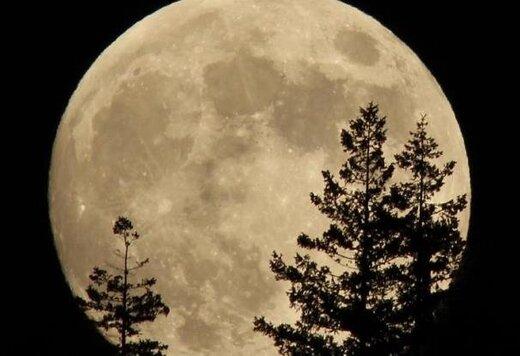 ببینید | تصاویری خیره کننده از اَبَر ماه بر فراز پوزئیدون یونان