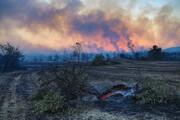 آتش در جنگلهای استان فارس همچنان زبانه  میکشد