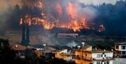 مقصر آتشسوزی ترکیه که بود؟/ سیاستمداران:گروه «پکک»، متخصصان:تغییراقلیم