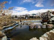 پارک پردیسان در آستانه تبدیل به نخستین منطقه حفاظت شده شهری