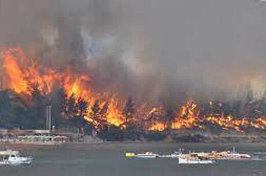 ببینید | تصاویری جدید از آتشسوزی گسترده و مهیب در ایتالیا