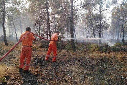 ببینید | گسترش آتشسوزیهای جنگلی در ترکیه