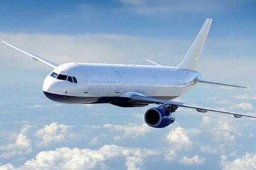 ببینید | تصاویر باورنکردنی از کتککاری شدید مسافران آمریکایی در هواپیما