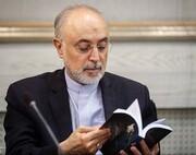 گزارش علی اکبر صالحی از آغاز بحران هسته ای منتشر شد/ عکس