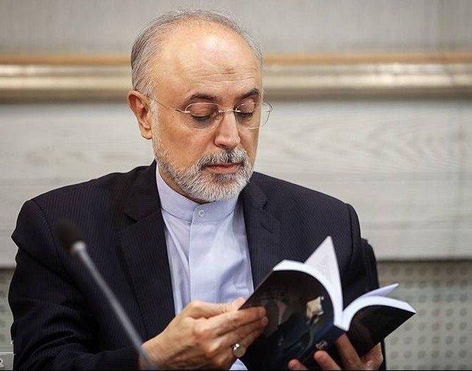 توضیح صالحی درباره انتشار کتاب راز سر به مهر