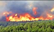 ببینید | آتش سوزی شدید در شمال آتن پایتخت یونان