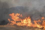 ببینید | تصاویر هوایی خسارات شدید سیسیل ایتالیا بعد از آتشسوزی
