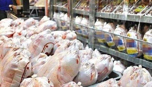 دامپزشکی: مرغهای ایرانی تریاکی نیستند