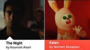 ۲ فیلم ترسناک ایرانی به جشنواره لیسبون پرتغال رفتند