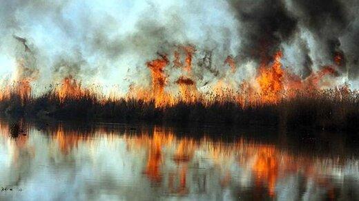 ببینید   تالاب بندر انزلی پس از ۳ روز سوختن در آتش، خاموش شد