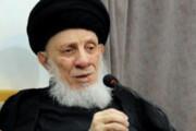 عکس | حجت الاسلام پناهیان در مراسم خاکسپاری آیت الله محمد سعید حکیم
