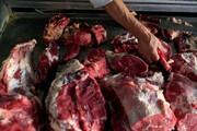 کشف گوشت الاغ و اسب از یک دامداری؛ عاملان دستگیر شدند