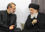 پیام تسلیت علی لاریجانی برای رحلت آیتالله سید محمدسعید حکیم