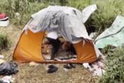 ببینید | بیخانمانی و چادرخوابی یک جوان با مدرک کارشناسی ارشد در لنگرود!