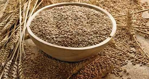 لغو مصوبه آزادسازی قیمت سبوس/ بحران در کمین صنعت آرد