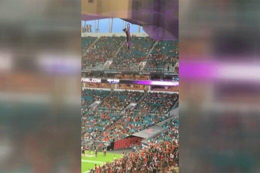 ببینید   لحظه نجات هیجانانگیز گربه بازیگوش پس از سقوط هولناک از سقف استادیوم